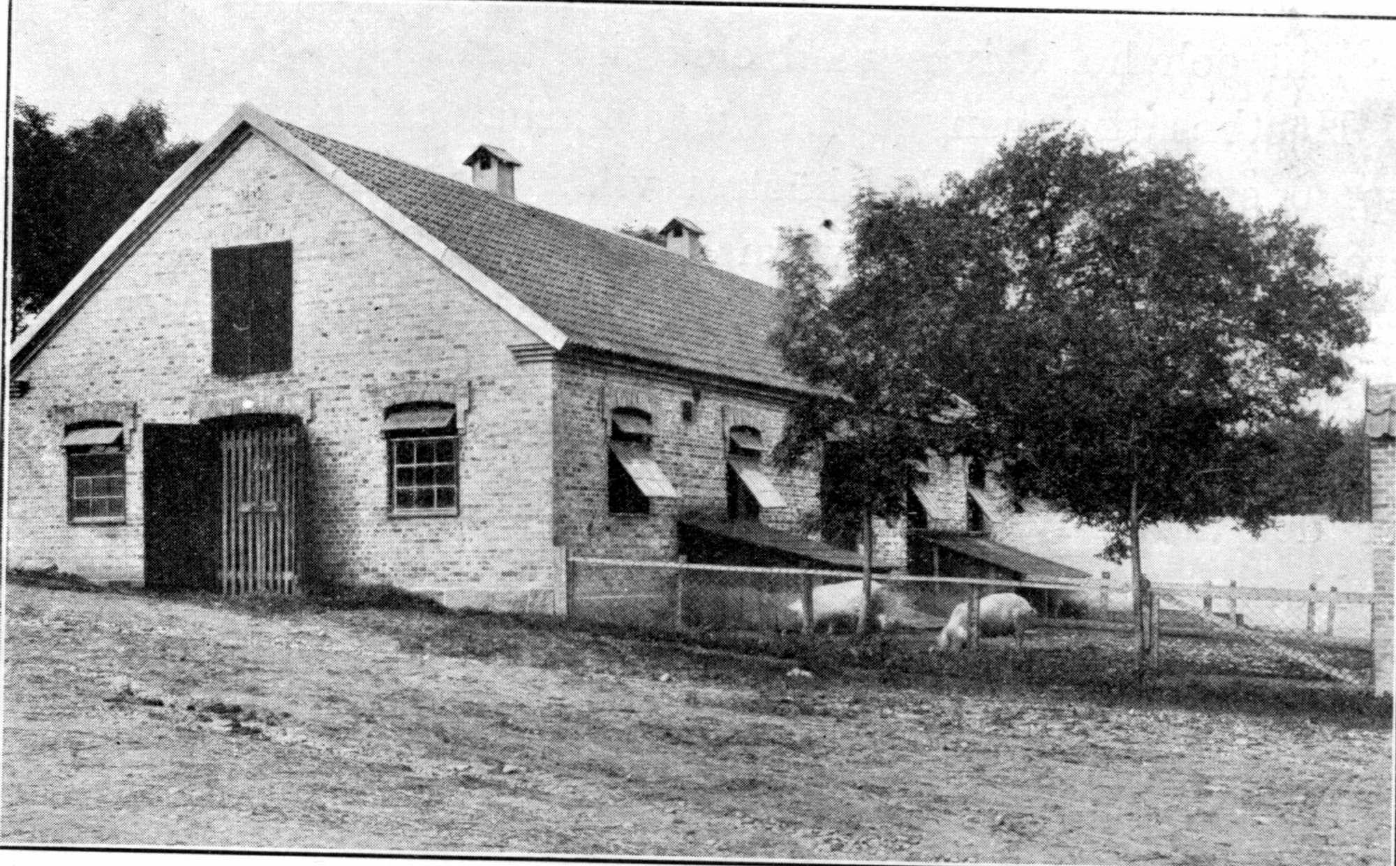 Svinhuset i början av 1990-talet