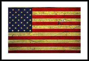 Trumpland - bilden av Amerikanska flaggan som klistermärke på The L-Train i New York är ett statement. En symbol för rädslan för vår framtid i Trumpland med sin krackelerade etik och moral. Text Håkan Ludwigson